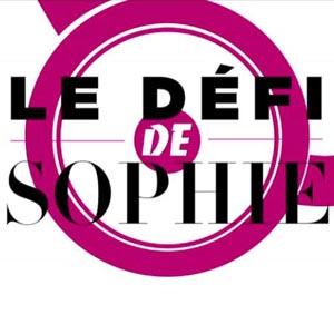 Le défi de Sophie